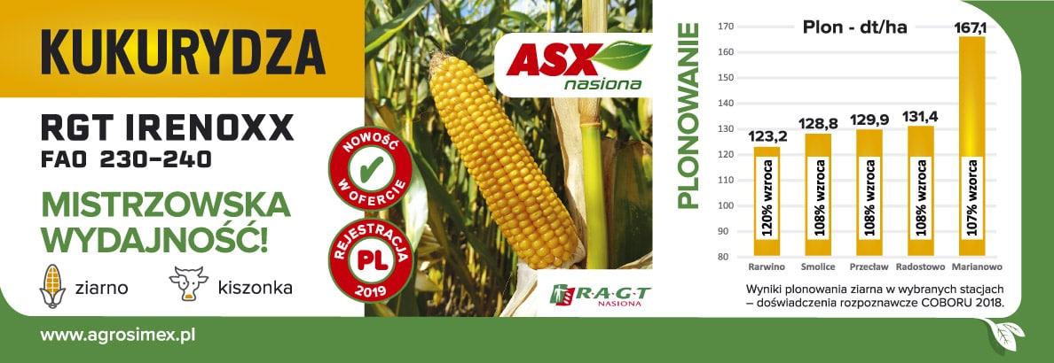 RGT Irrenoxx Agrosimex