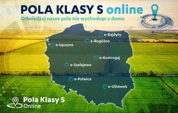 Pola Klasy S online