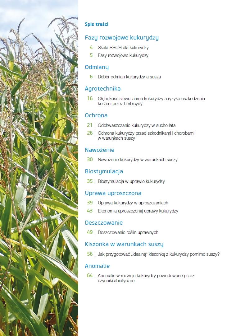 Uprawa kukurydzy w niekorzystnych warunkach spis treści