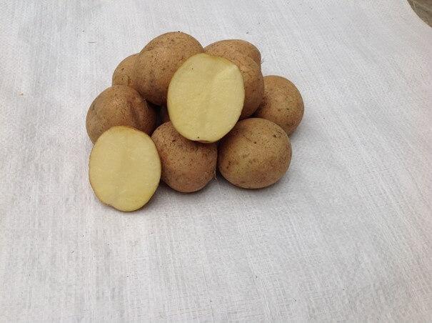 Ziemniaki Finezja