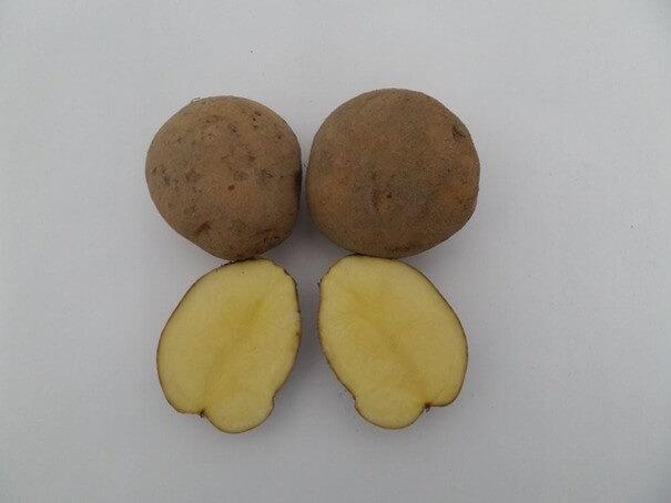Ziemniaki Jasia