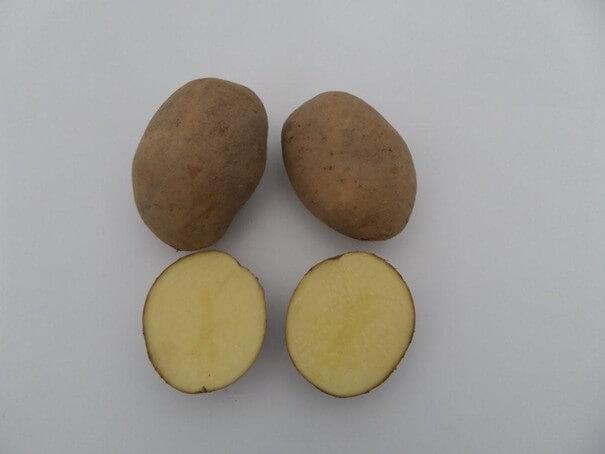 Ziemniaki Kuba