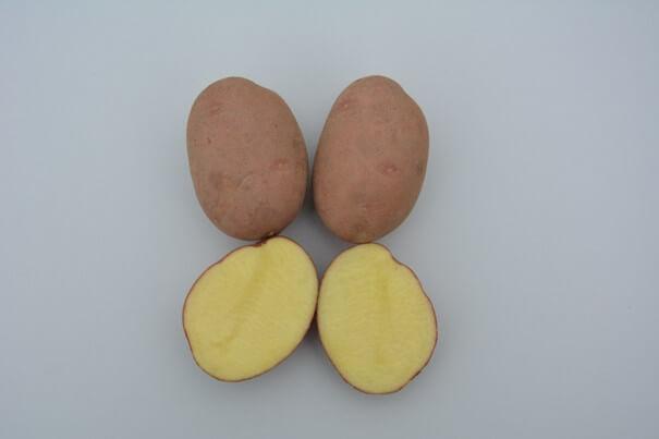 Ziemniaki Oberon