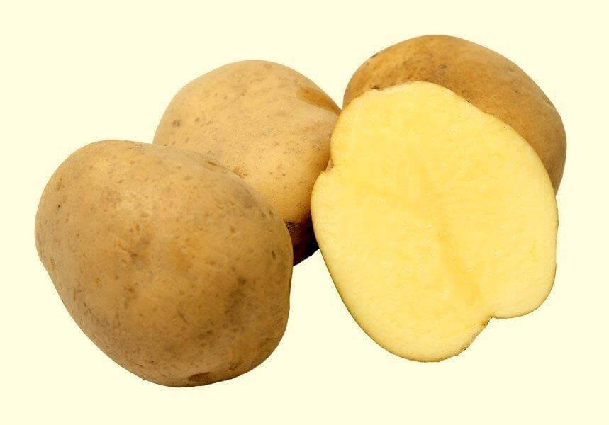 Ziemniaki Bryza