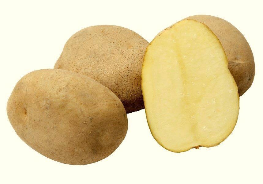 Ziemniaki Cekin
