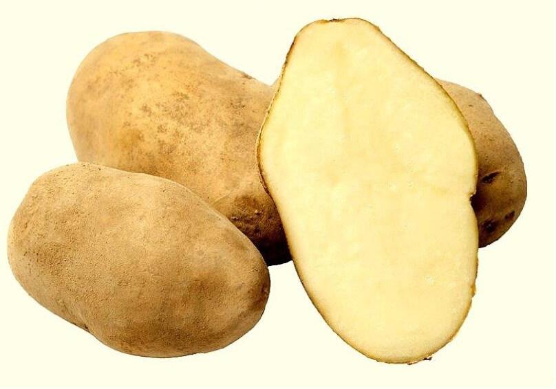 Ziemniaki Irys