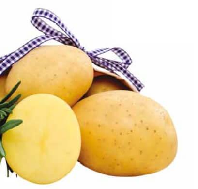 Ziemniaki Nandina