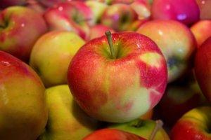 Rząd chce nałożyć embargo na polskie owoce